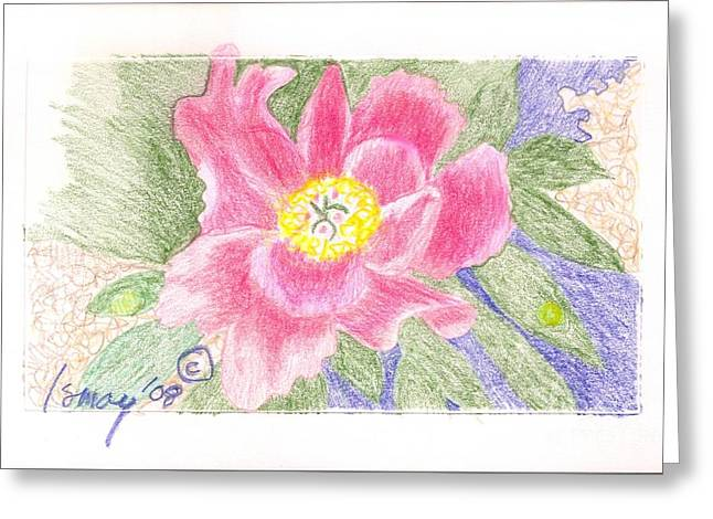Flower 3 - Pink Single Peone Greeting Card by Rod Ismay