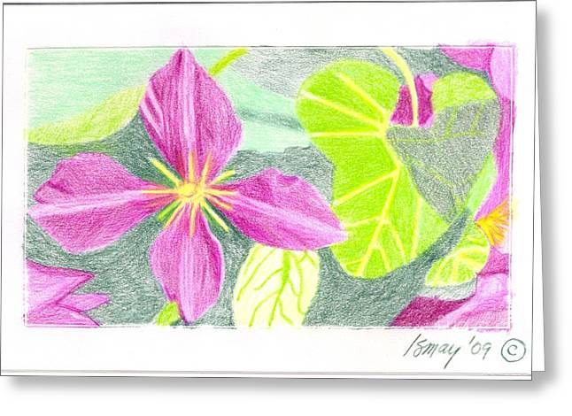 Flower 5 - Purple Clematis Greeting Card by Rod Ismay