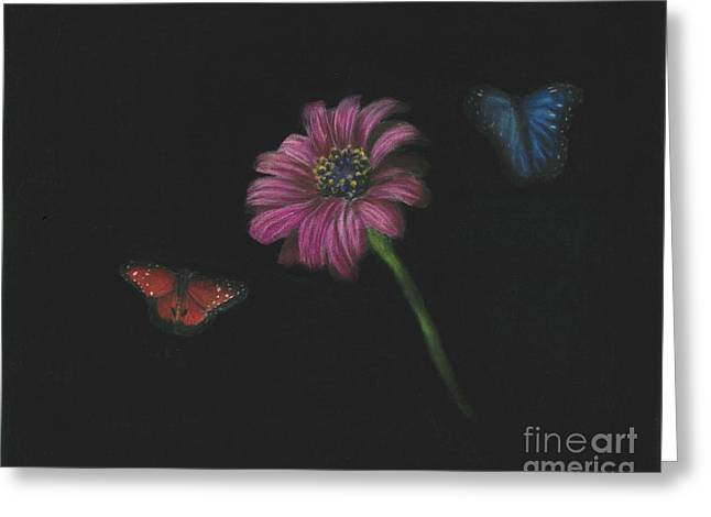 Flower And Butterflys Greeting Card