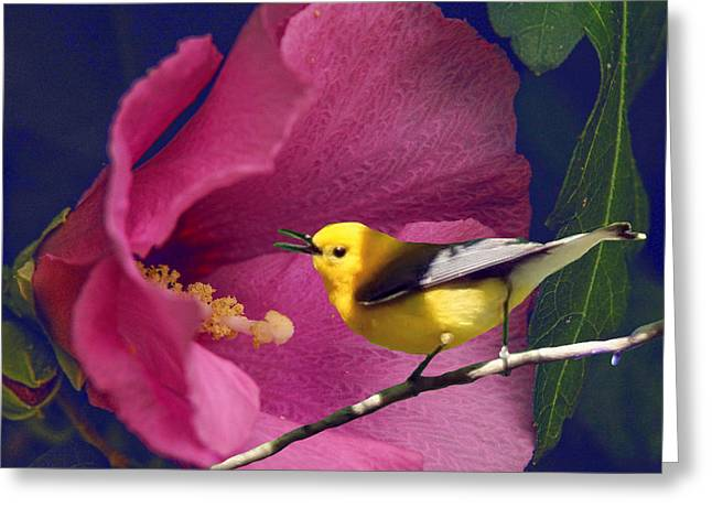 Flower And The Bird Greeting Card by Richard Smith