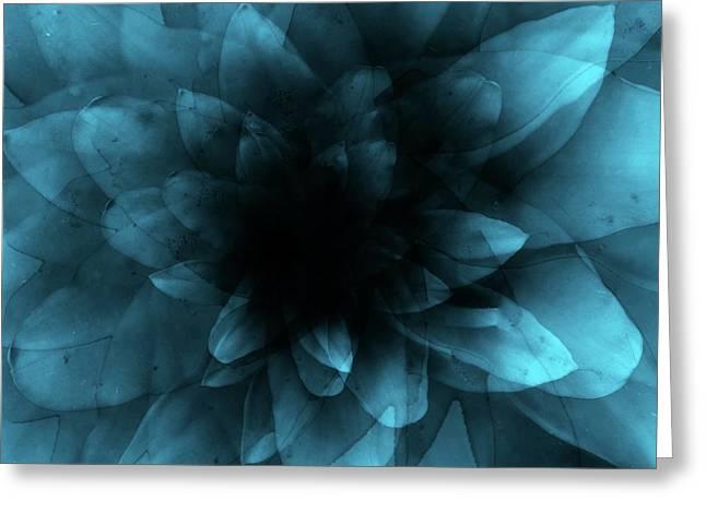 Flower  Blue Greeting Card by Johan Lilja