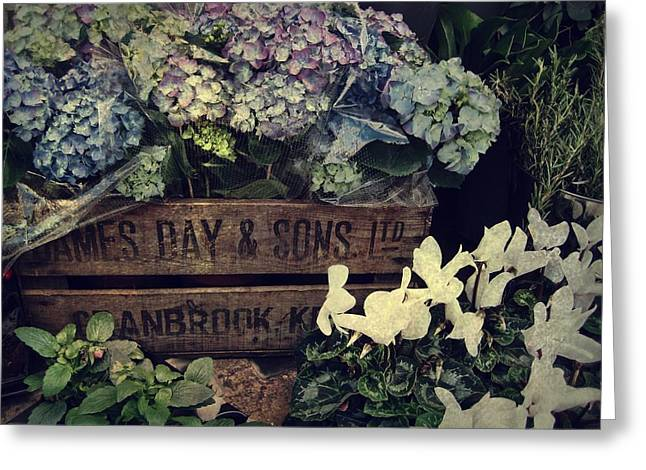 Flower Box Greeting Card by JAMART Photography