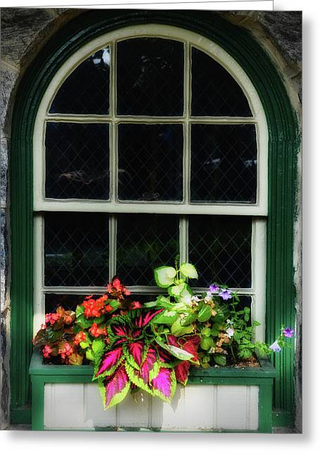 Flower Box On A Green Window Greeting Card by Bill Cannon