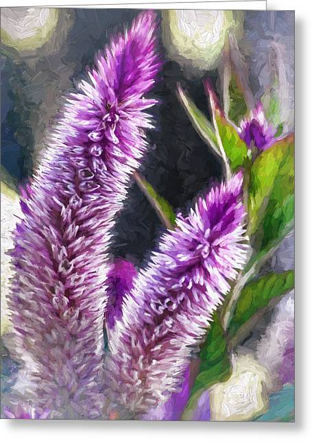 Flower - Purple Celosia - Purple Plumes Greeting Card by Black Brook Photography