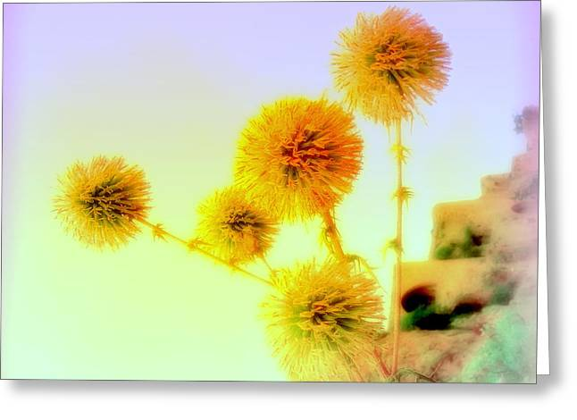 Be My Yellow Flower   Greeting Card