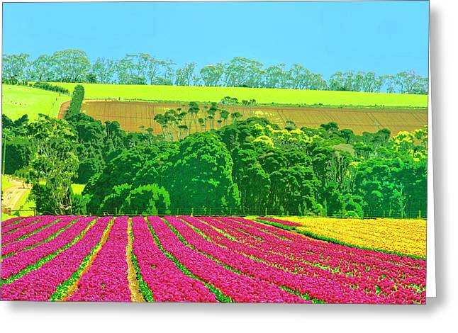 Lahaina Mixed Media Greeting Cards - Flower Farm and Hills Greeting Card by Dominic Piperata