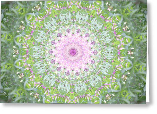 Greeting Card featuring the photograph Flower Mandala - B by Anthony Rego
