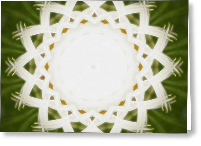 Greeting Card featuring the digital art Flower Mandala - C by Anthony Rego