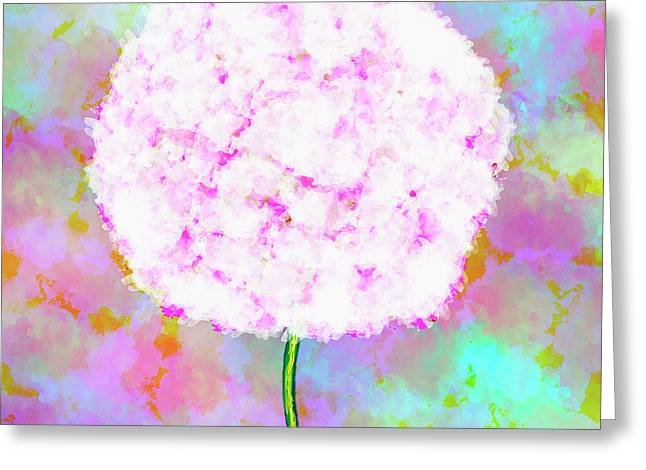 Flower On Color Greeting Card by Skip Nall