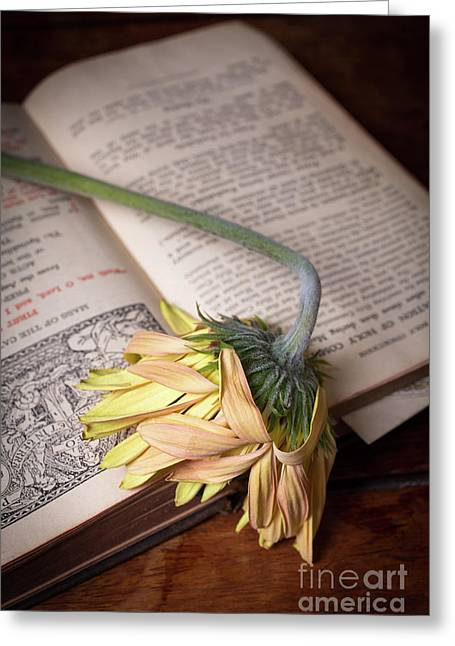 Flower On Old Bible Greeting Card