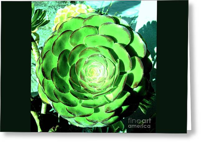 Flower Pattern Of Life Greeting Card