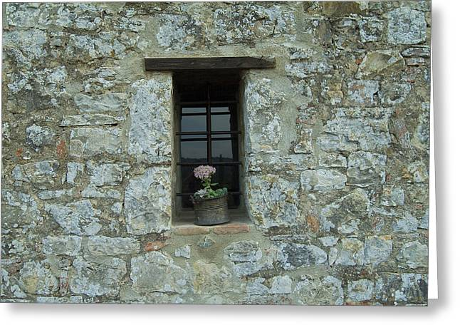 Flower Pot In The Window Of A Tuscan Greeting Card by Todd Gipstein