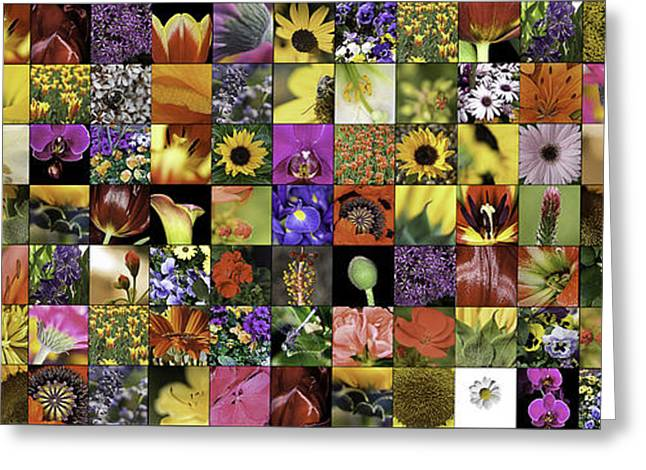 Flower Power Pano Greeting Card