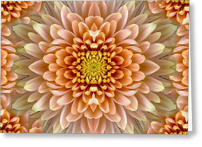 Smudge Greeting Cards - Flower power Greeting Card by Sumit Mehndiratta