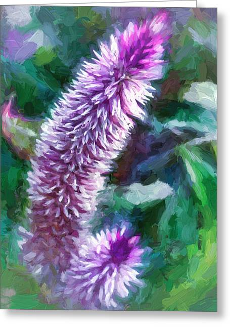 Flower - Purple Celosia - Deep Purple Greeting Card by Black Brook Photography