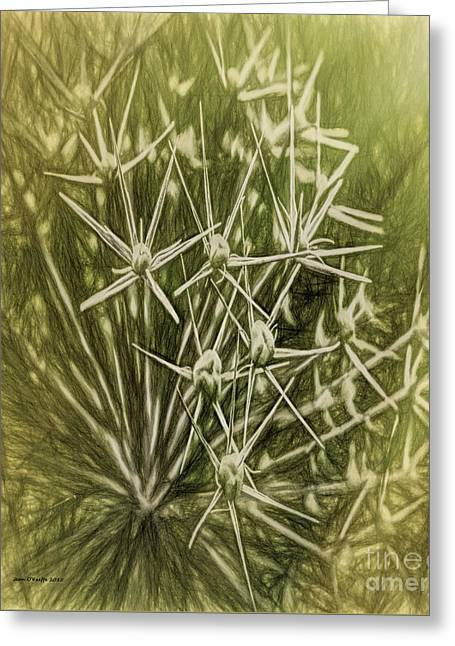 Flower Rays Greeting Card by Jean OKeeffe Macro Abundance Art