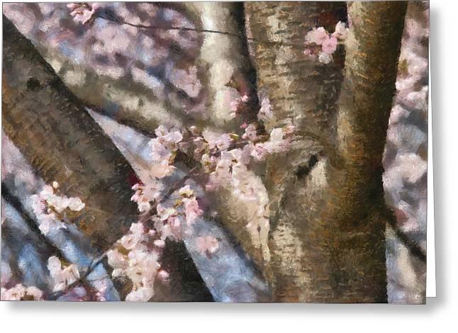 Flower - Sakura - Spring Blossom Greeting Card by Mike Savad