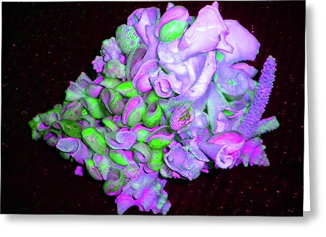 Flower Shell Bouquet Greeting Card by Arlin Jules