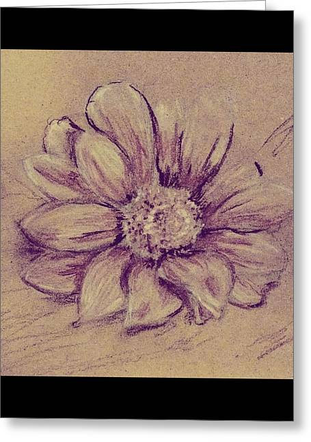 Greeting Card featuring the drawing Flower Sketch  by Kara Evelyn-McNeil