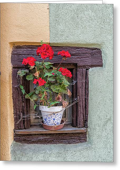 Greeting Card featuring the photograph Flower Still Life by Alan Toepfer