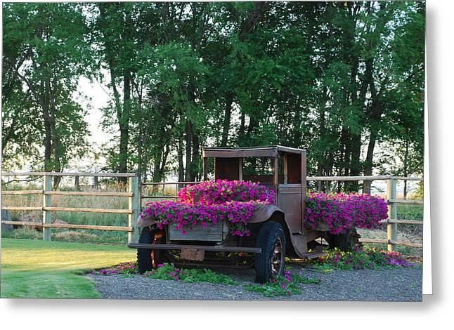 Flower Truck Greeting Card by Linda Larson