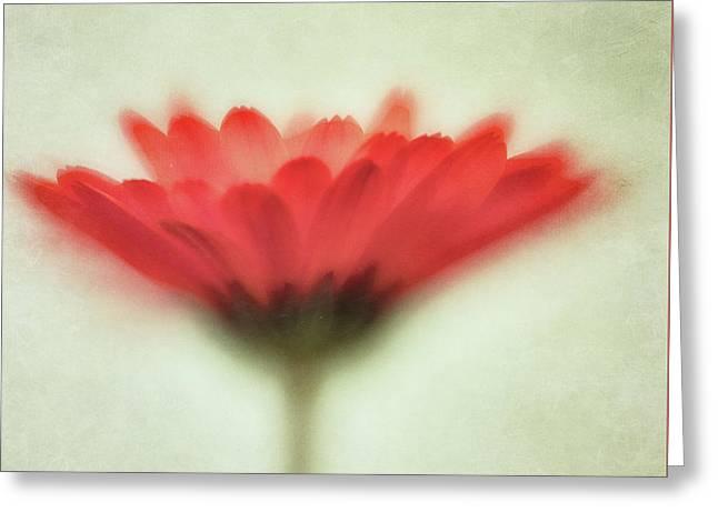 Flower Whispers Greeting Card by Priska Wettstein