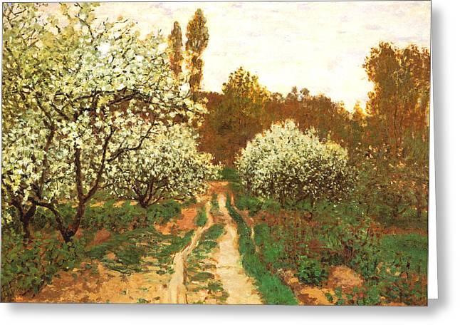 Flowering Apple Trees Greeting Card