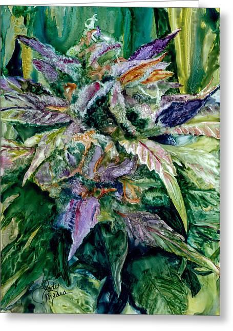 Cannabis  Greeting Card by Jody O'Meara