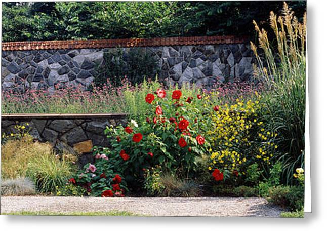 Flowering Plants In A Garden, Biltmore Greeting Card by Panoramic Images