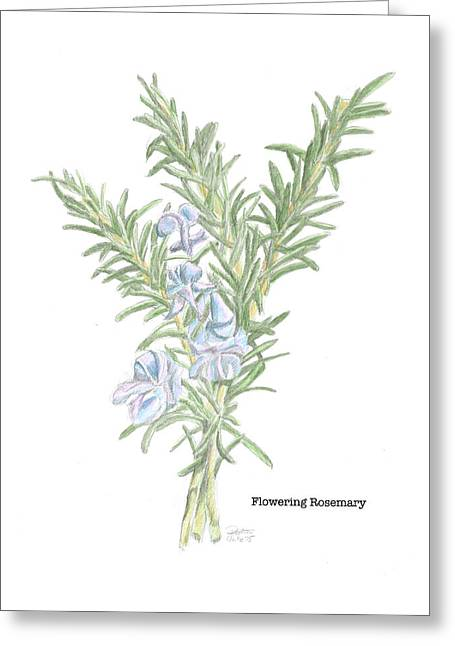 Flowering Rosemary Greeting Card by Dominic White