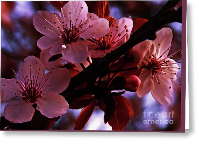 Flowers 001211 Greeting Card by Yaani G