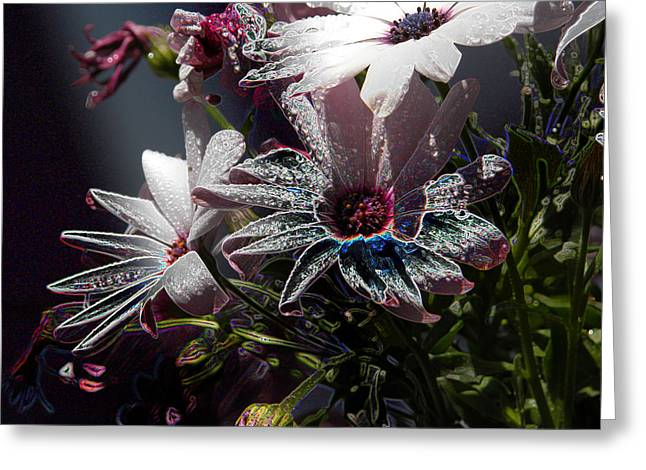 Flowers Greeting Card by Stuart Turnbull