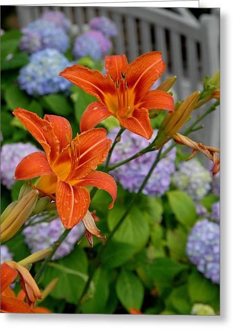 Lilies Framed Prints Greeting Cards - Flowers 263 Greeting Card by Joyce StJames
