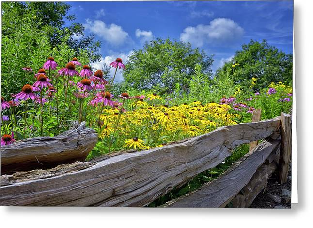Flowers Along A Wooden Fence Greeting Card