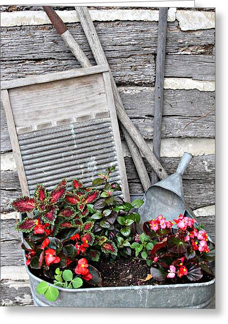 Flowers And Plants In Wash Tub Greeting Card by Linda Phelps