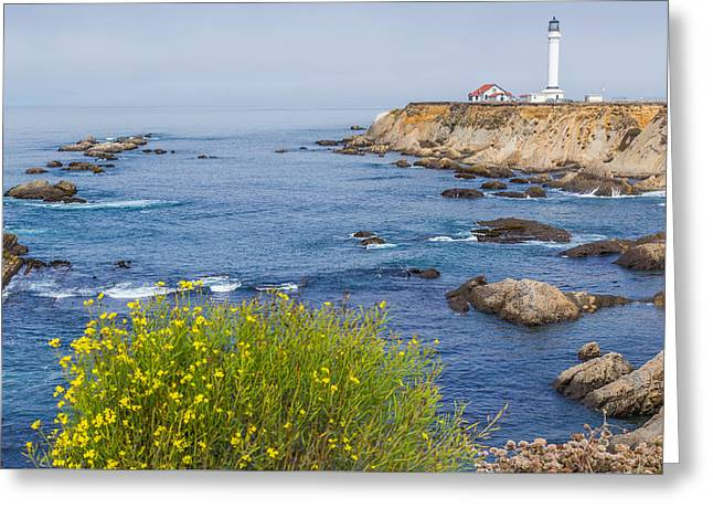 California Beaches Greeting Cards - Flowers and Point Arena Lighthouse Greeting Card by Marc Crumpler