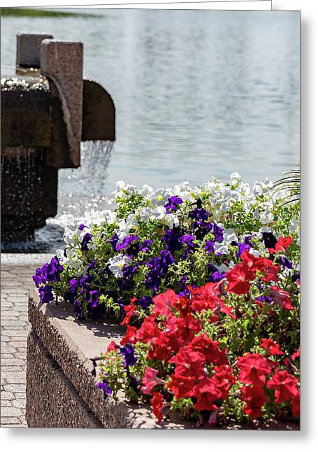 Flowers And Water Greeting Card