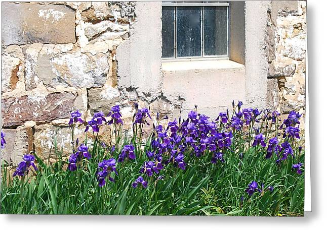 Flowers And Worn House Greeting Card