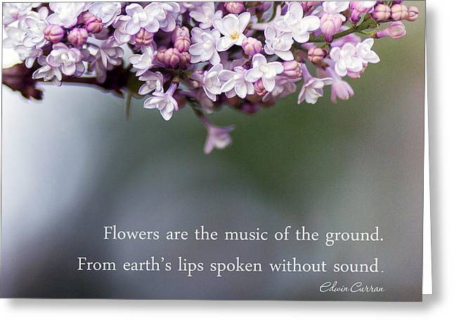 Flowers Are Music Greeting Card