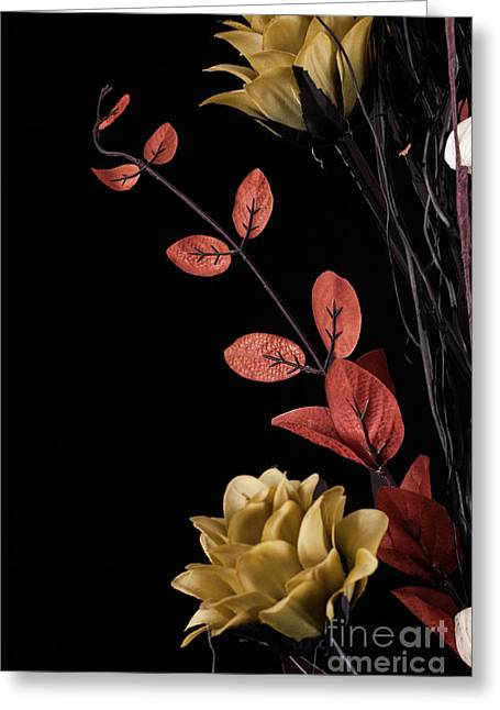 Flowers Arrangement With Black Background Greeting Card by Simon Bratt Photography LRPS