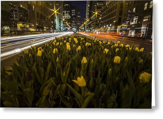 Flowers At Night On Chicago's Mag Mile Greeting Card