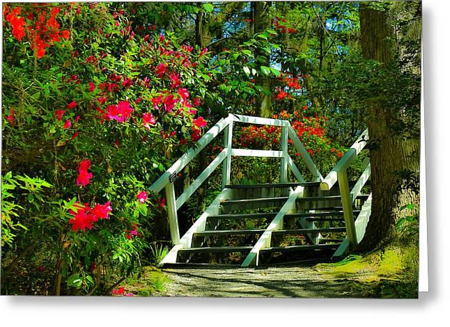 Flowers Bloom Alongside Magnolia Plantation Bridge - Charleston Sc Greeting Card