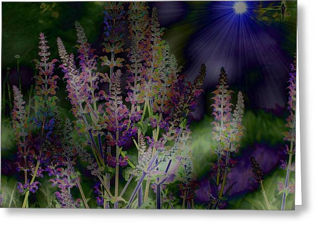 Flowers By Moonlight Greeting Card by Barbara S Nickerson