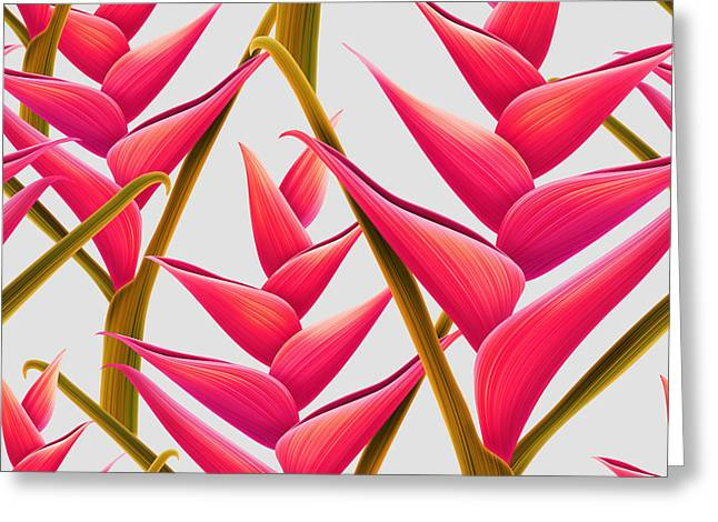 Flowers Fantasia   Greeting Card by Mark Ashkenazi