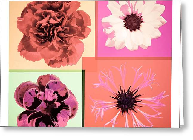 Flowers For 4 Greeting Card by Adam Smith