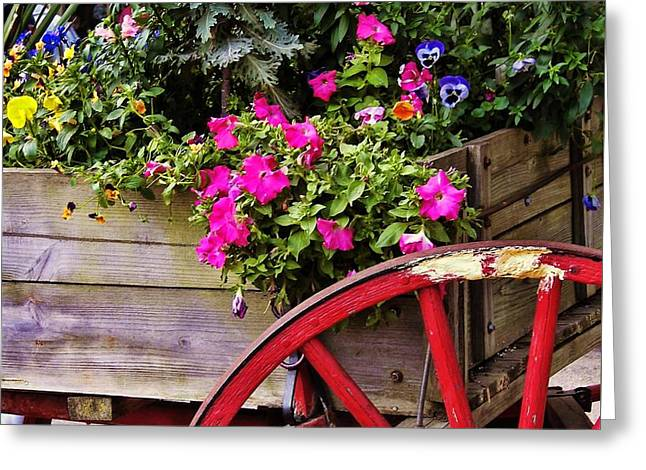 Flowers For Sale Greeting Card by JAMART Photography