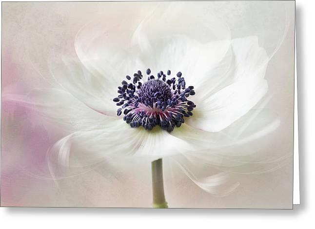 Flowers From Venus Greeting Card
