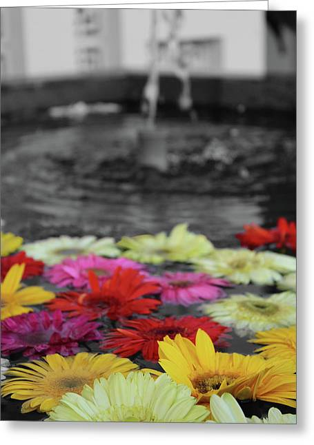 Flowers In Fountain Greeting Card