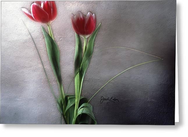 Flowers In Light Greeting Card by Jack Eadon