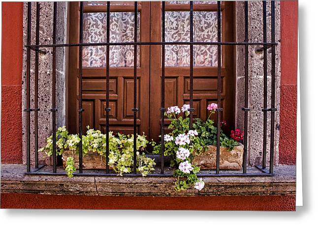 Flowers In Window Box San Miguel De Allende Greeting Card by Carol Leigh